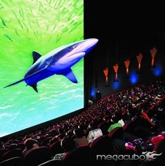 imax_shark_big