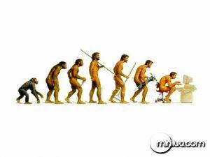 macacos dancando