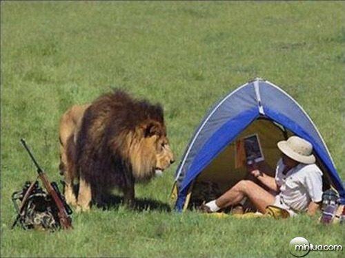 oh-lion