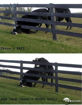 dairy-fail