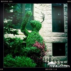 how-to-decorate-your-yard04
