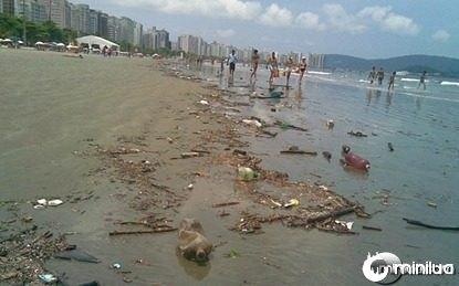 Lixo em Praias 1