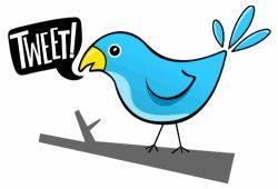 algumas-perolas-do-twitter (1)