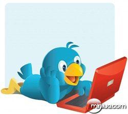 twitter-bird-with-pc-1024x915