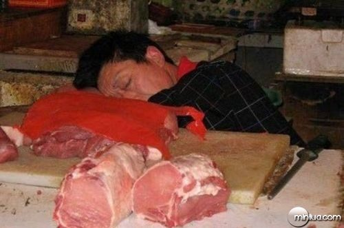 chinos-durmiendo-12