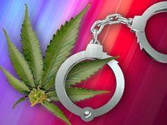 maconha- legalizar ou não