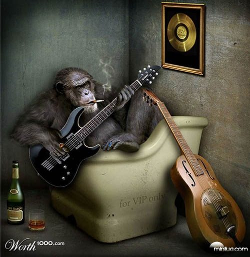 ape_guitarist