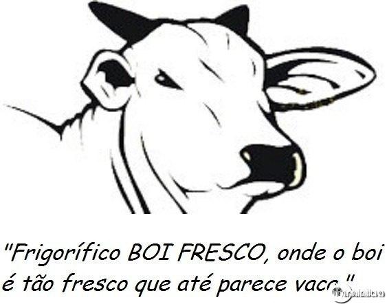 126021030191354frigorifico2