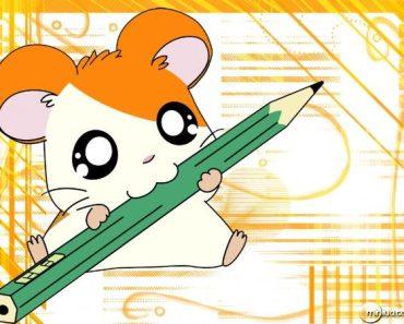 Animações que marcaram época: Hamtaro #16