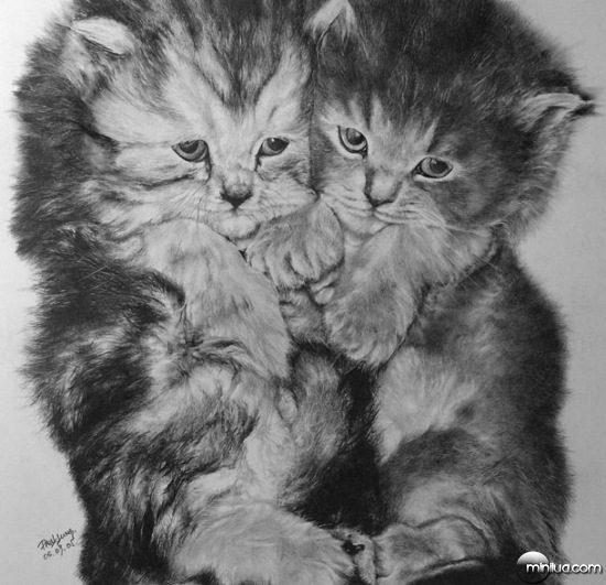 cat-drawings-06