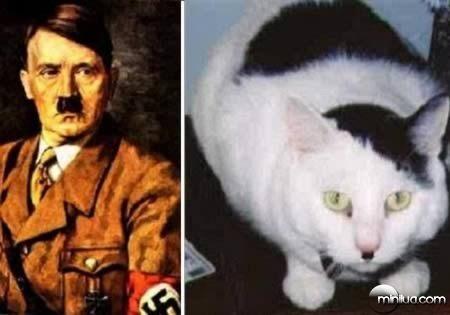 a98100_cat_1-hitler