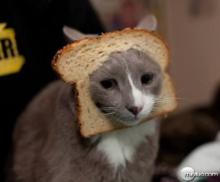 a98100_cat_7-breading