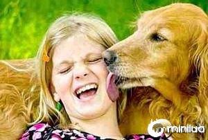 petrede-cachorro-lambendo