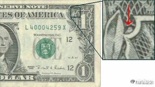 dolar1-coruja