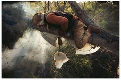 Before harvesting the honey to the left, Bahadur lowers a piece of the Larva to his fellow Raji which they love to eat.<br /><br /><br /> Bahadur, avant de recolter la poche de miel( a gauche), descend les larves dont les Raji raffolent.
