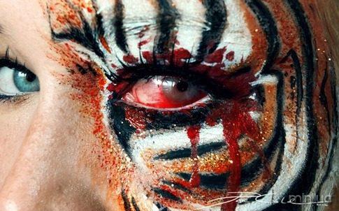 arte e maquiagem tigresa_thumb[1]