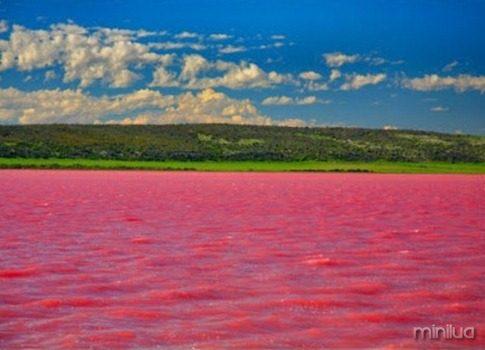 lago rosa de baixo_thumb[1]