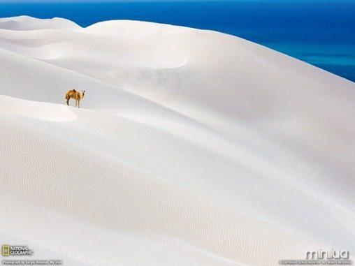 fotos da natgeo dunas[3]