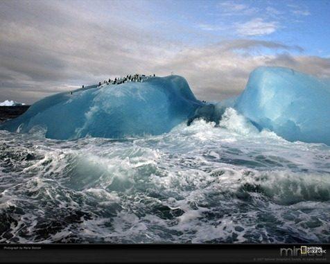 fotos da natgeo iceberg[3]