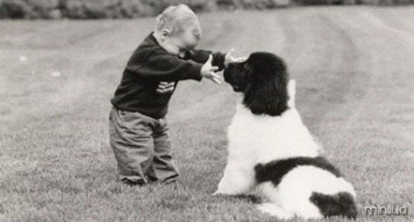 cachorroecrianca