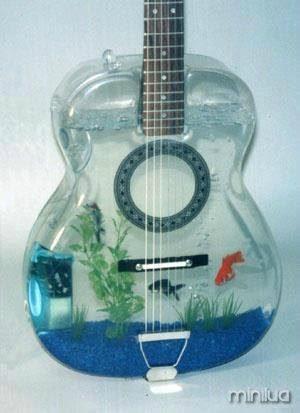 aquário 1