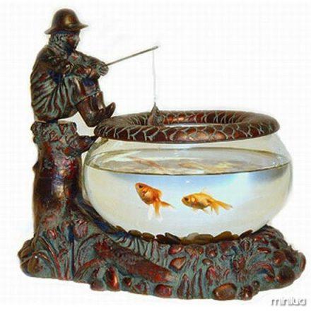 aquário 3