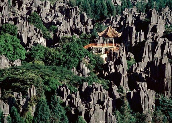 Stonewoods,-Shilin-Yunnan-Province,-China