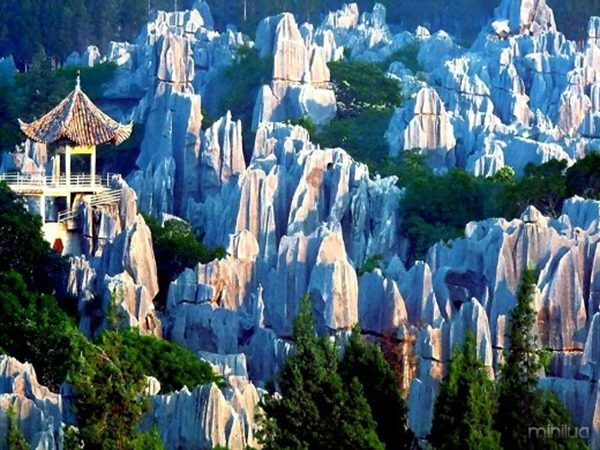 the-Stone-Forest-in-Shilin-10