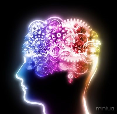 cerebro-divididoo