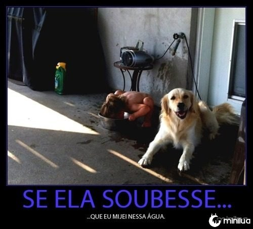 fantasmarenegado_79007_2
