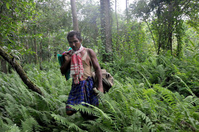 jadav-payeng-of-assam-the-man-who-grew-his-ow-L-zgUiZq