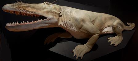 ambulocetus-walking-whale-model-extreme_imagelarge