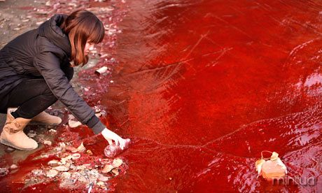 A journalist takes a sample of red polluted water in the Jianhe River, China