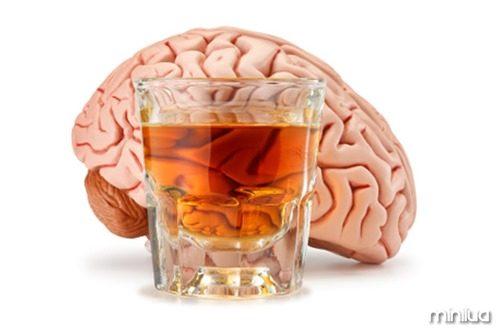 bebida2
