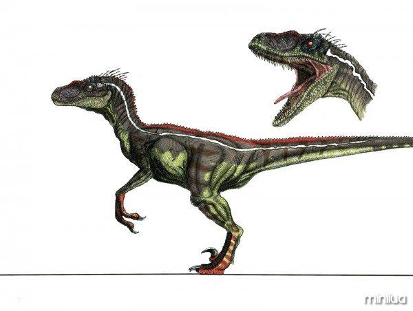jp3_male_velociraptor_by_yankeetrex-d3iqgr0
