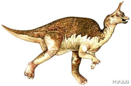 tsintaosaurus_2_big