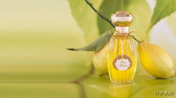 Annick-Goutal-Perfume-Eau-D-Hadrien-mais-caro