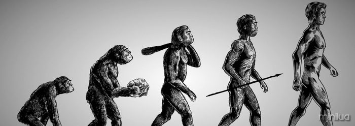 taf_evolution_man1_248