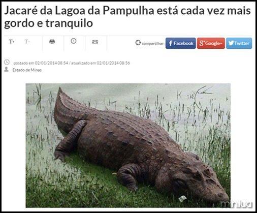 brasileiroshumor10