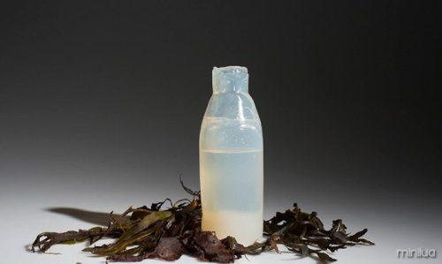 biodegradable-algae-water-bottle-ari-jonsson-2