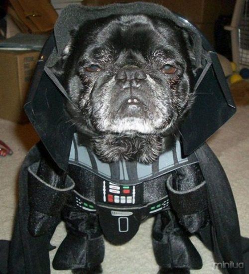 23-Darth-Vader