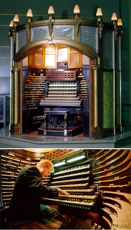 a231_organ