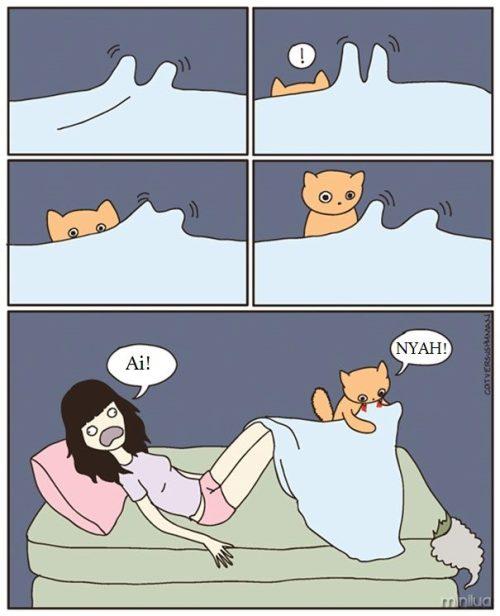 funny-cat-comics-cat-vs-human-57-579b0498c0ad0__605