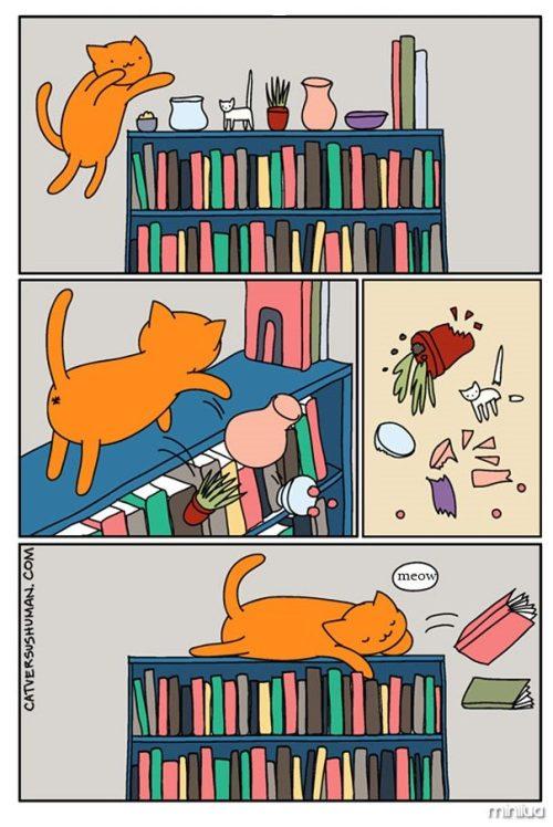 funny-cat-comics-cat-vs-human-6-579b041a1f510__605
