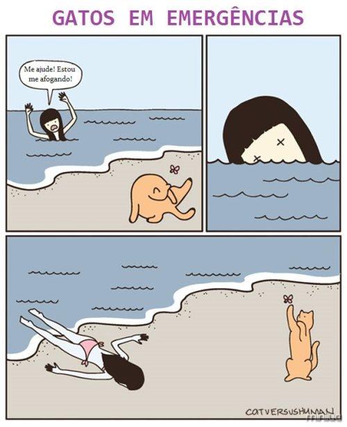 funny-cat-comics-cat-vs-human-79-579b04ce091ce__605