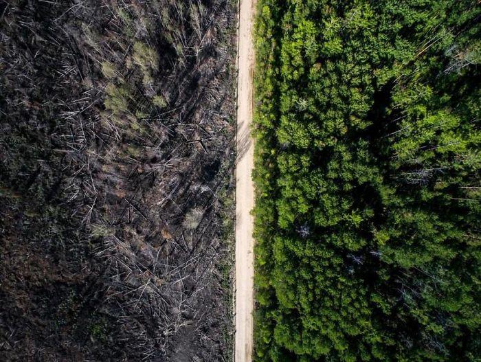 A estrada que parou o fogo