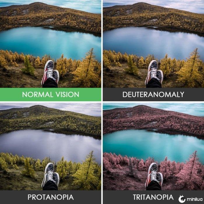 paisagem colorblindness