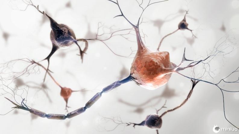 Como se generan los recuerdos en el cerebro 3