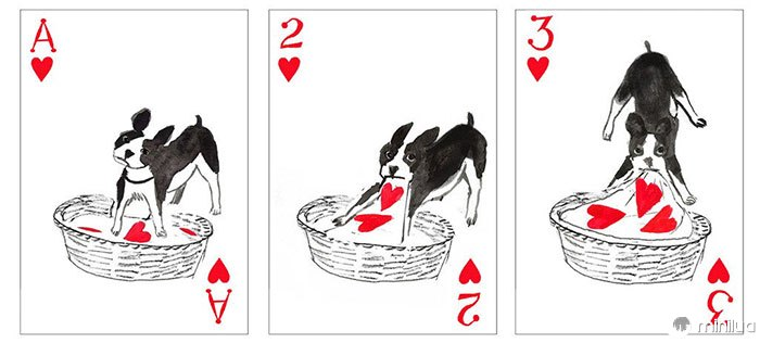 Pack-of-dogs-playing-cards-john-littleboy-18
