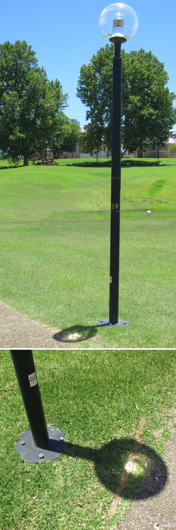 This Lamppost Focuses The Sun And Scorchers A Line In The Grass